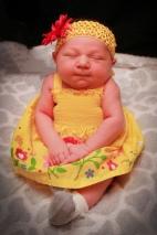 Newborn Photo
